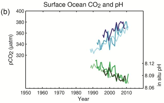 IPCCAR5oceanacidificationgraph